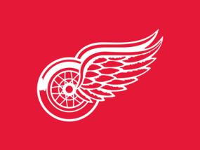 Red Wings Add Forward Timashov via Waivers